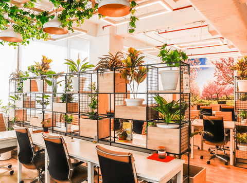 5 Reasons that make a Coworking Space Successful