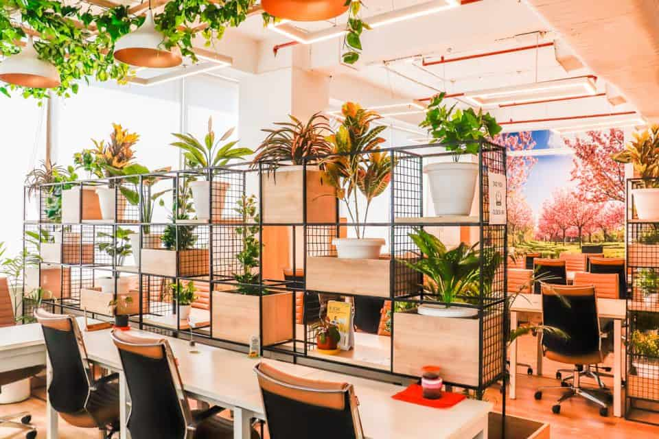 Top Reasons Why Coworking Spaces Are Important