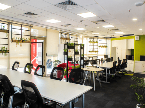 """Coworking space provider """"The Office Pass"""" set to expand operations"""